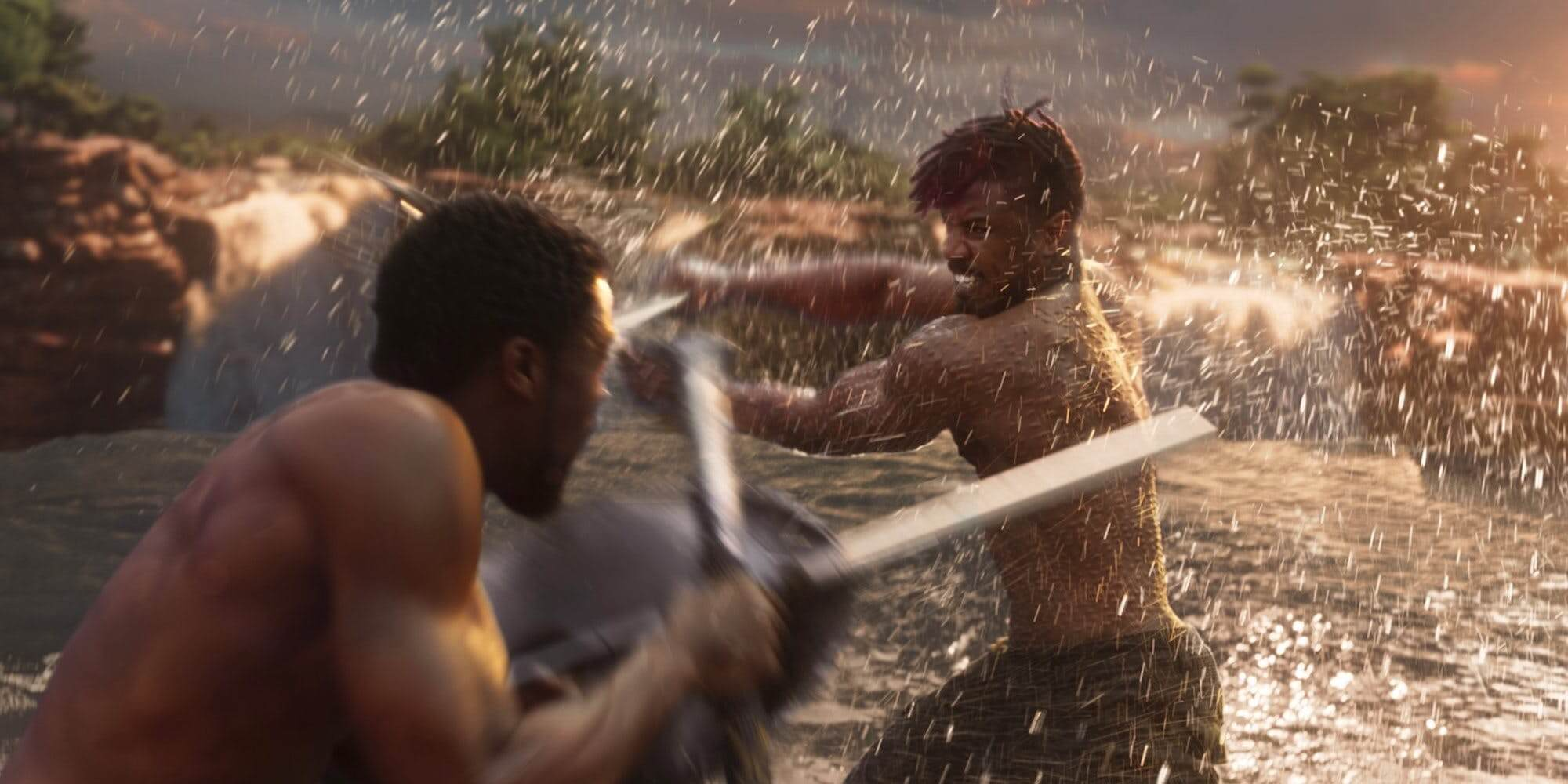 Black Panther Fight Scene