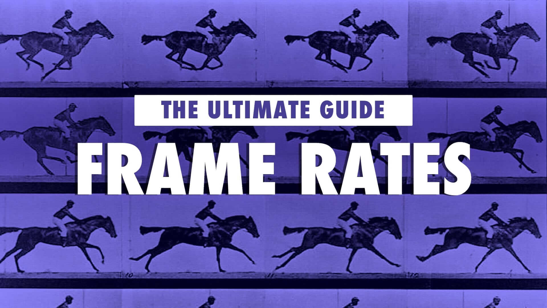 The Filmmaker's Guide to Video Frame Rates in 2019