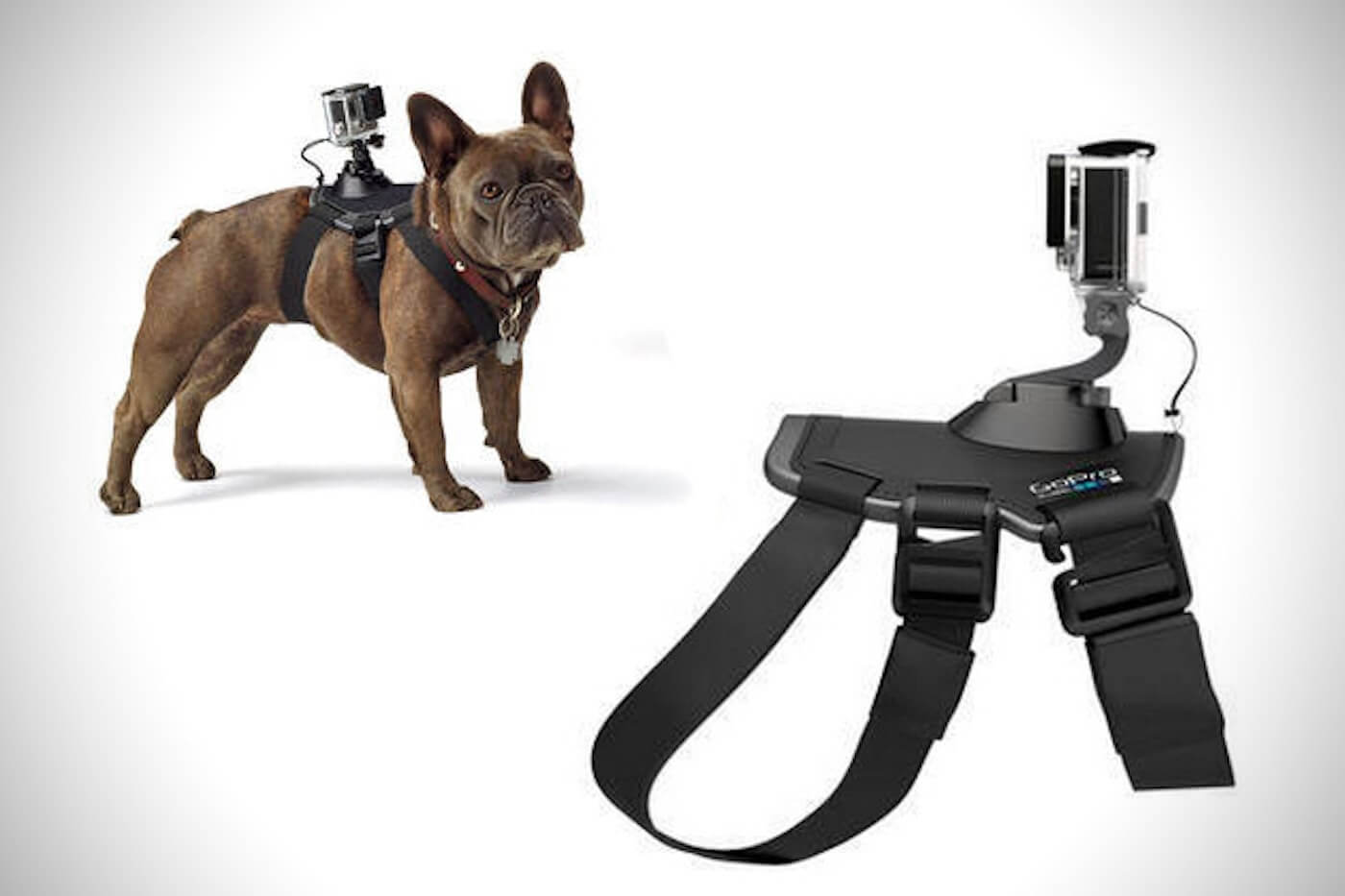 How to make the best GoPro videos for your Brand - Meet your new cinematographer