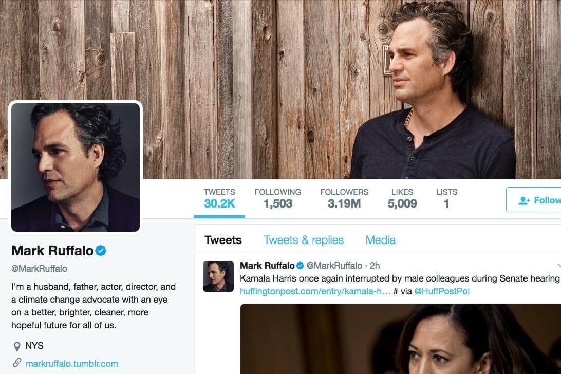 Film Distribution - Mark Ruffalo Twitter Account