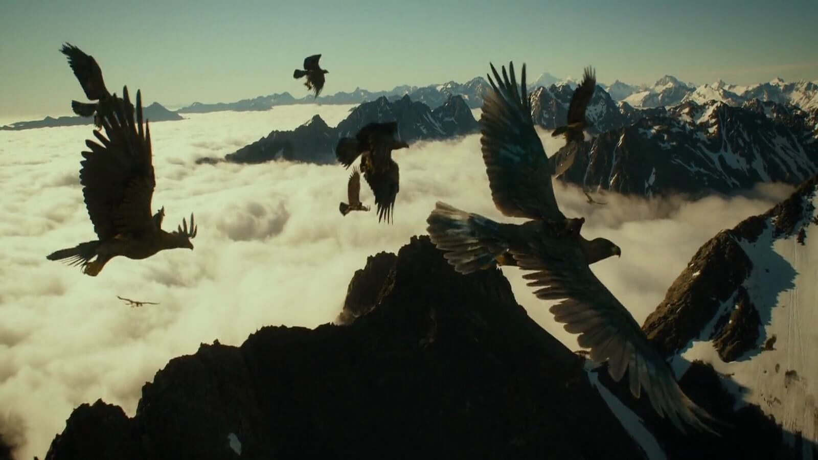 The Hero's Journey - 17 Steps to Craft the Perfect Screenplay - Birds