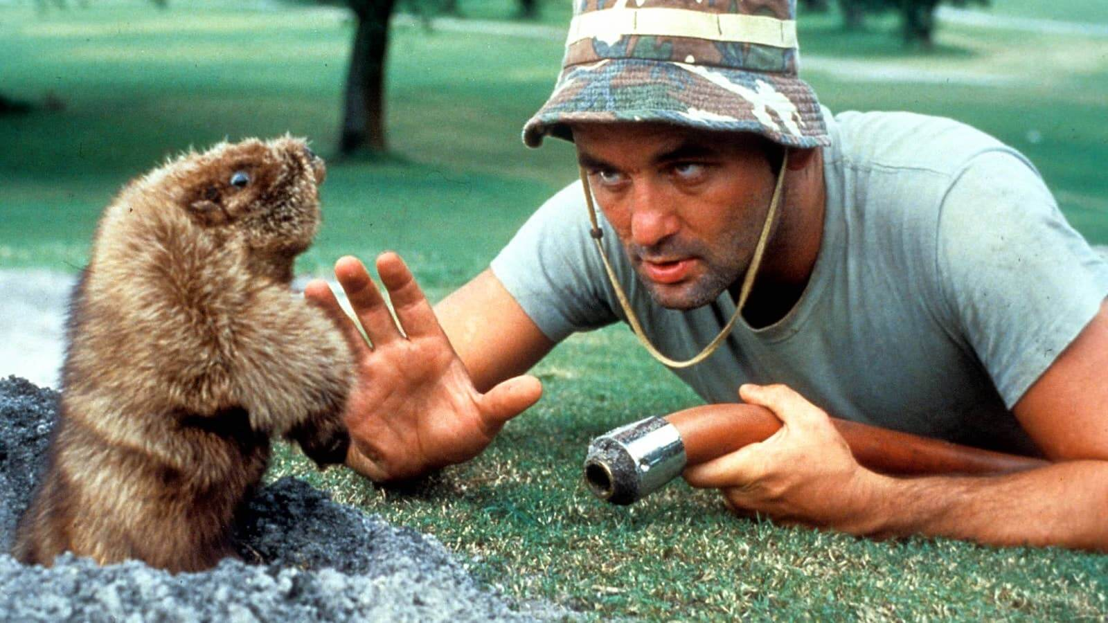 Best Comedy Movies of all Time- Caddyshack