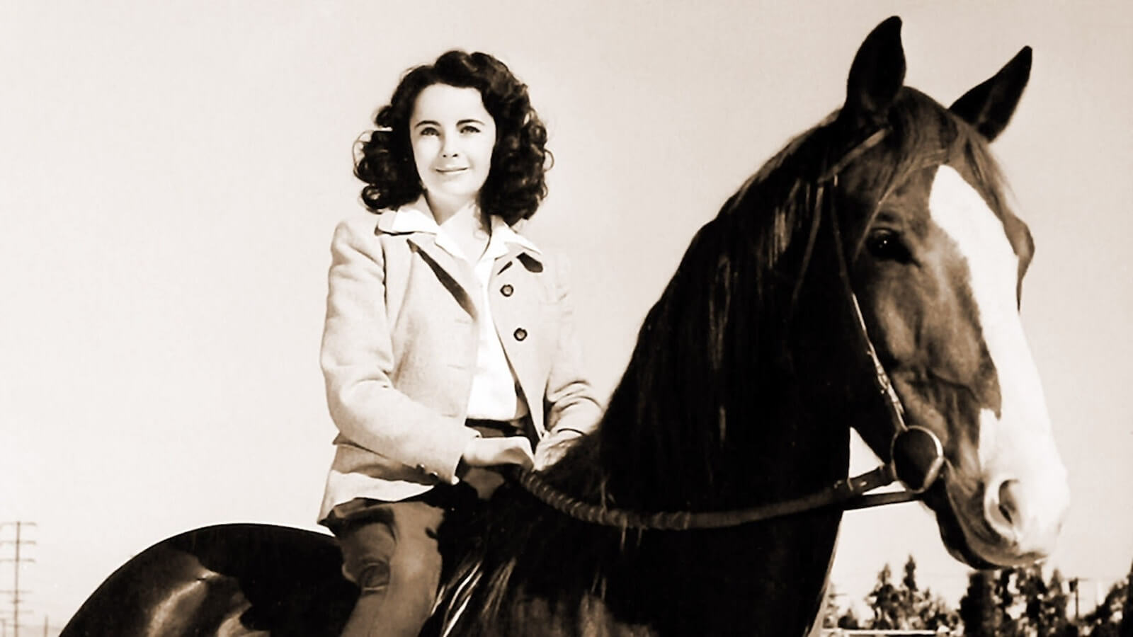 Child Actors - Child Stars - Child Actors Then and Now - Elizabeth Taylor - National Velvet - StudioBinder