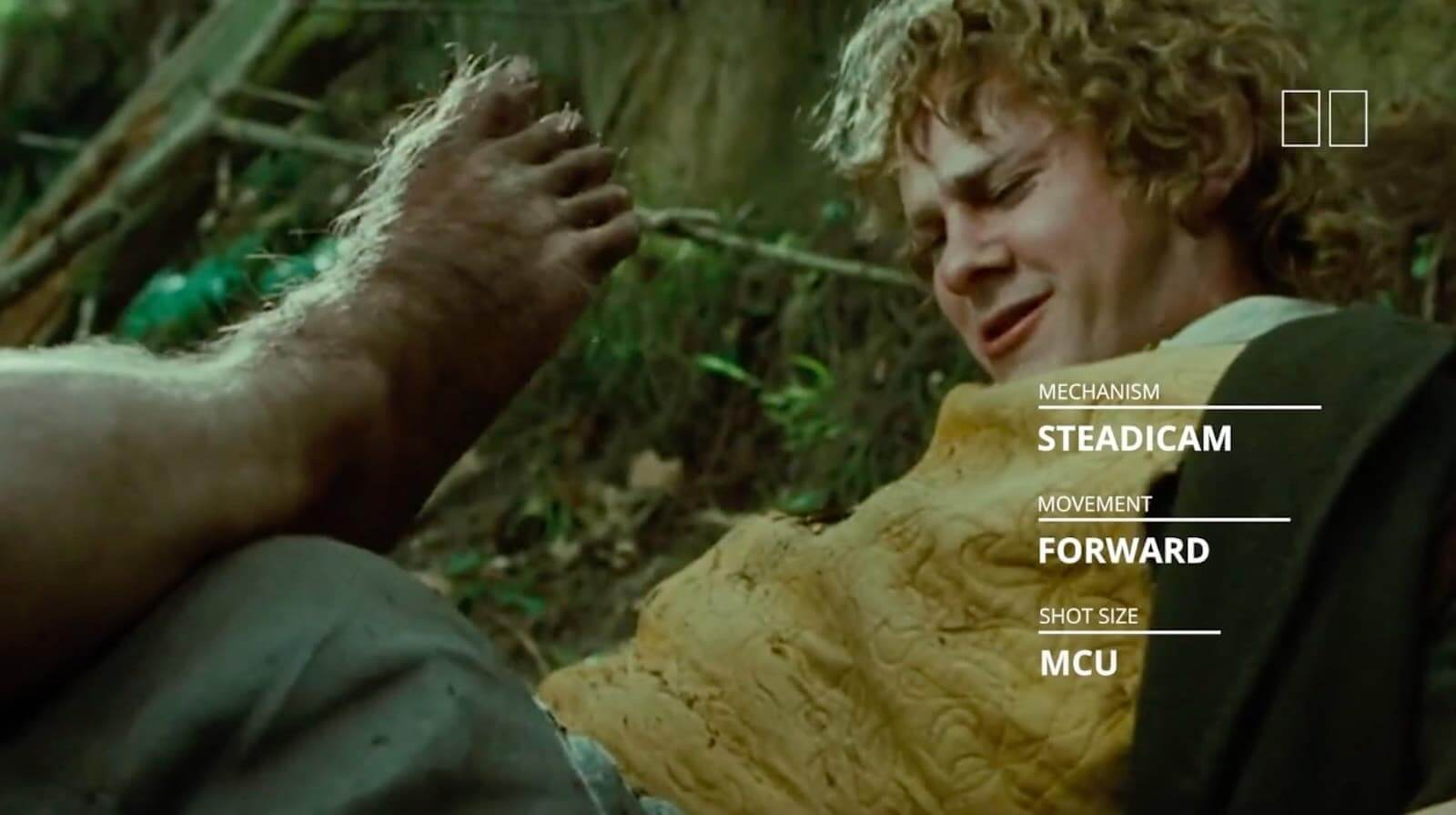 Dolly Zoom Effect Verteffect The Fellowship Of The Ring Studiobinder