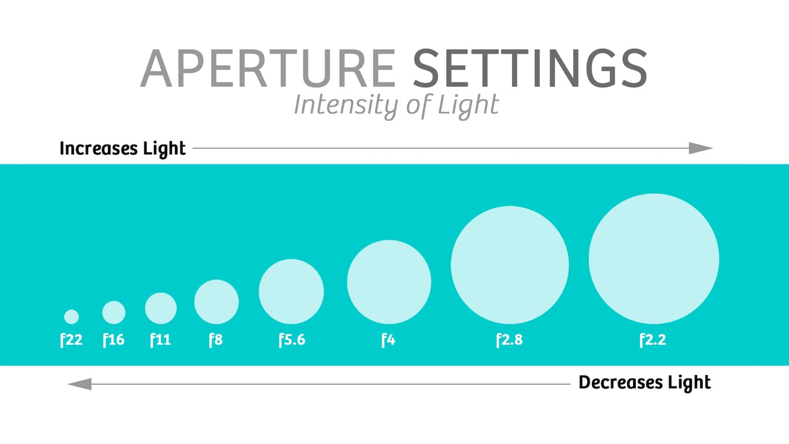 Essential Terminology For Camera Department - Cinematographer - Production Hacks - Film Terms - Aperture Settings - Aperture - F Stops.jpg