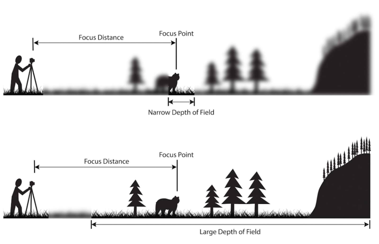 Rules of Shot Composition- Depth of Field
