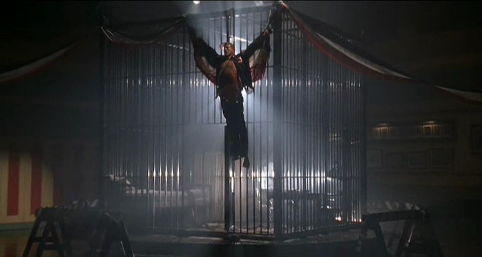 eagle-hang-silence