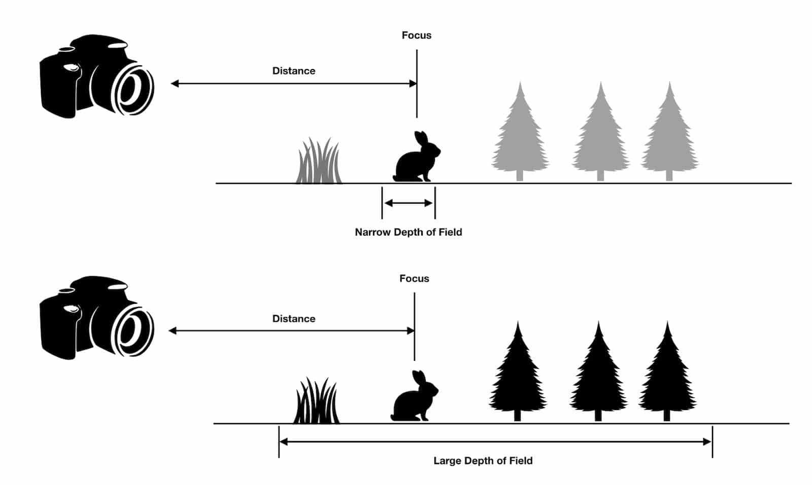 What is Depth of Field - Diagram