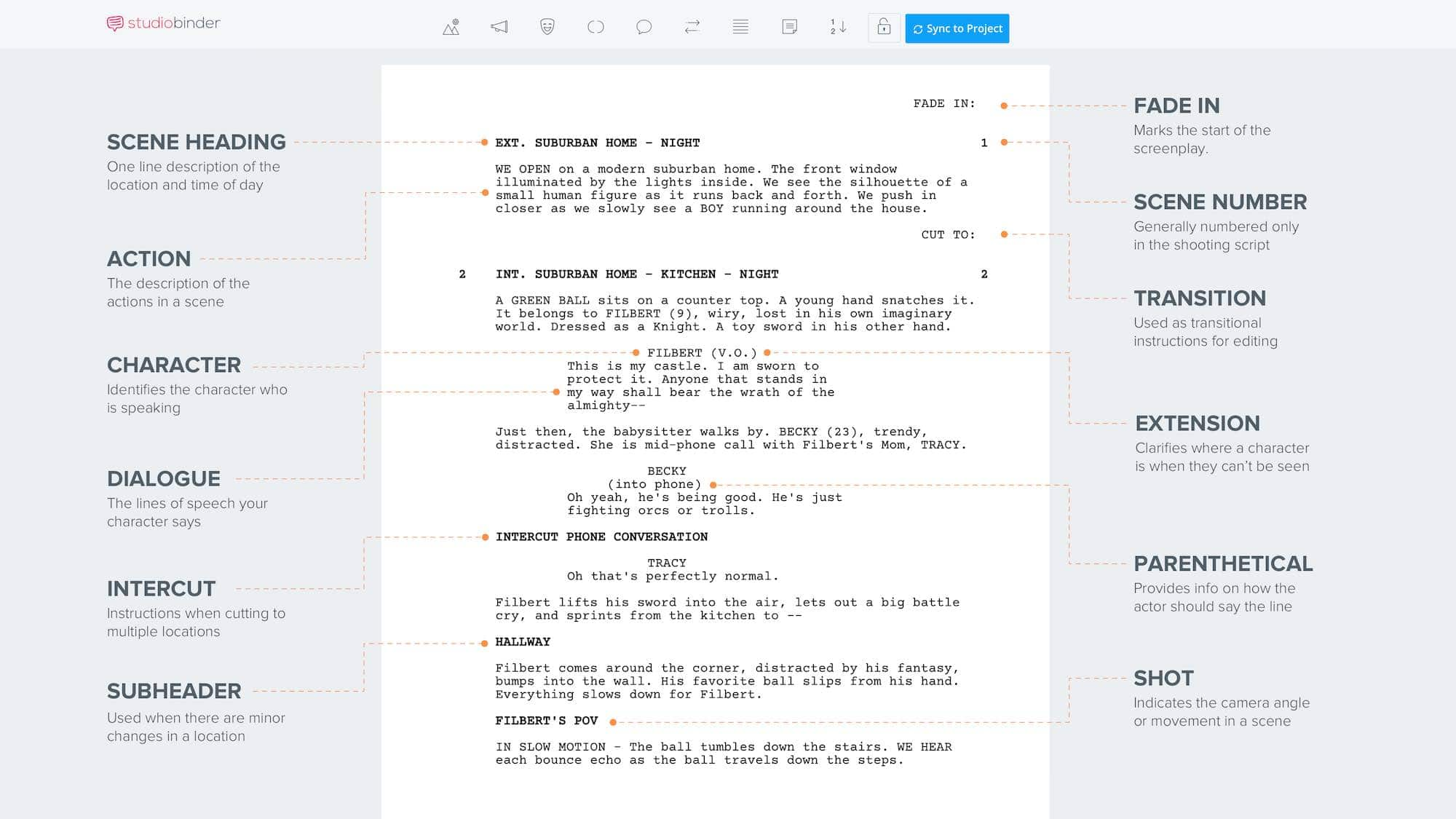 What is Script Writing - Script Format - Infographic