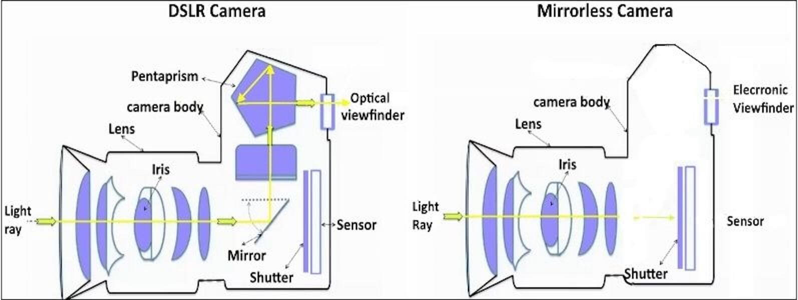 What is a Mirrorless Camera - Mirrorless Camera vs DSLR - Diagram