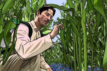 What is Rotoscoping - Featured Image