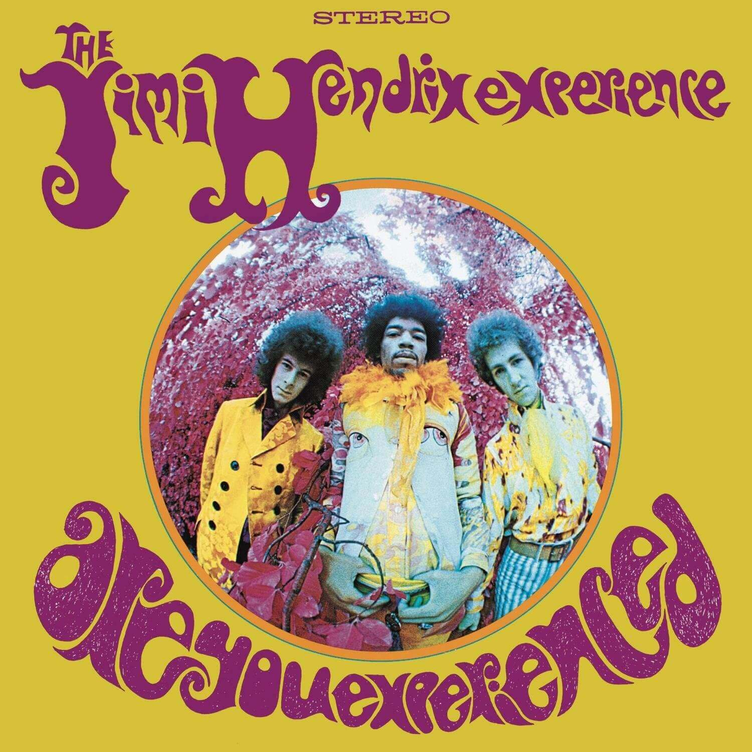 What is Fisheye Lens - Jimmy Hendrix Album Cover