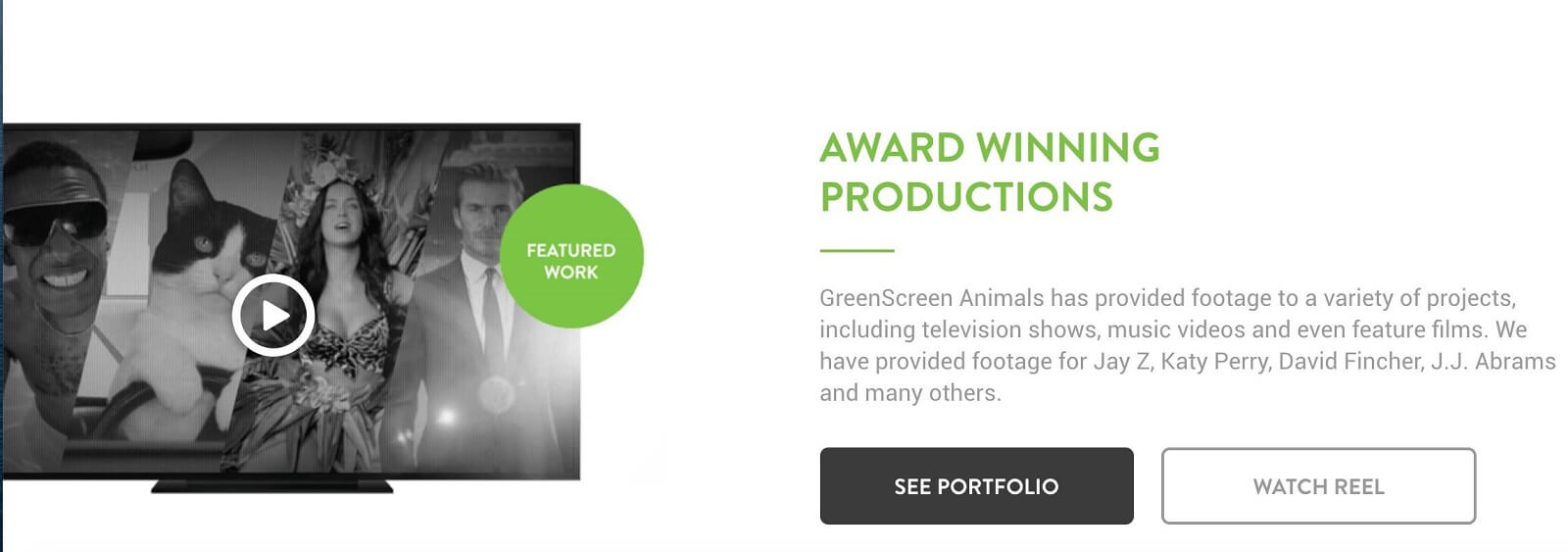 Best Green Screen Background Video - Portfolio - Green Screen Animals