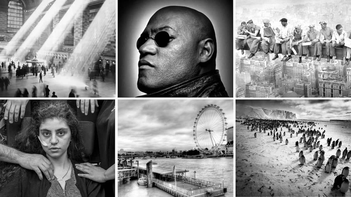 Black and White Pictures — Where to Find Amazing Pics - Prints - StudioBinder