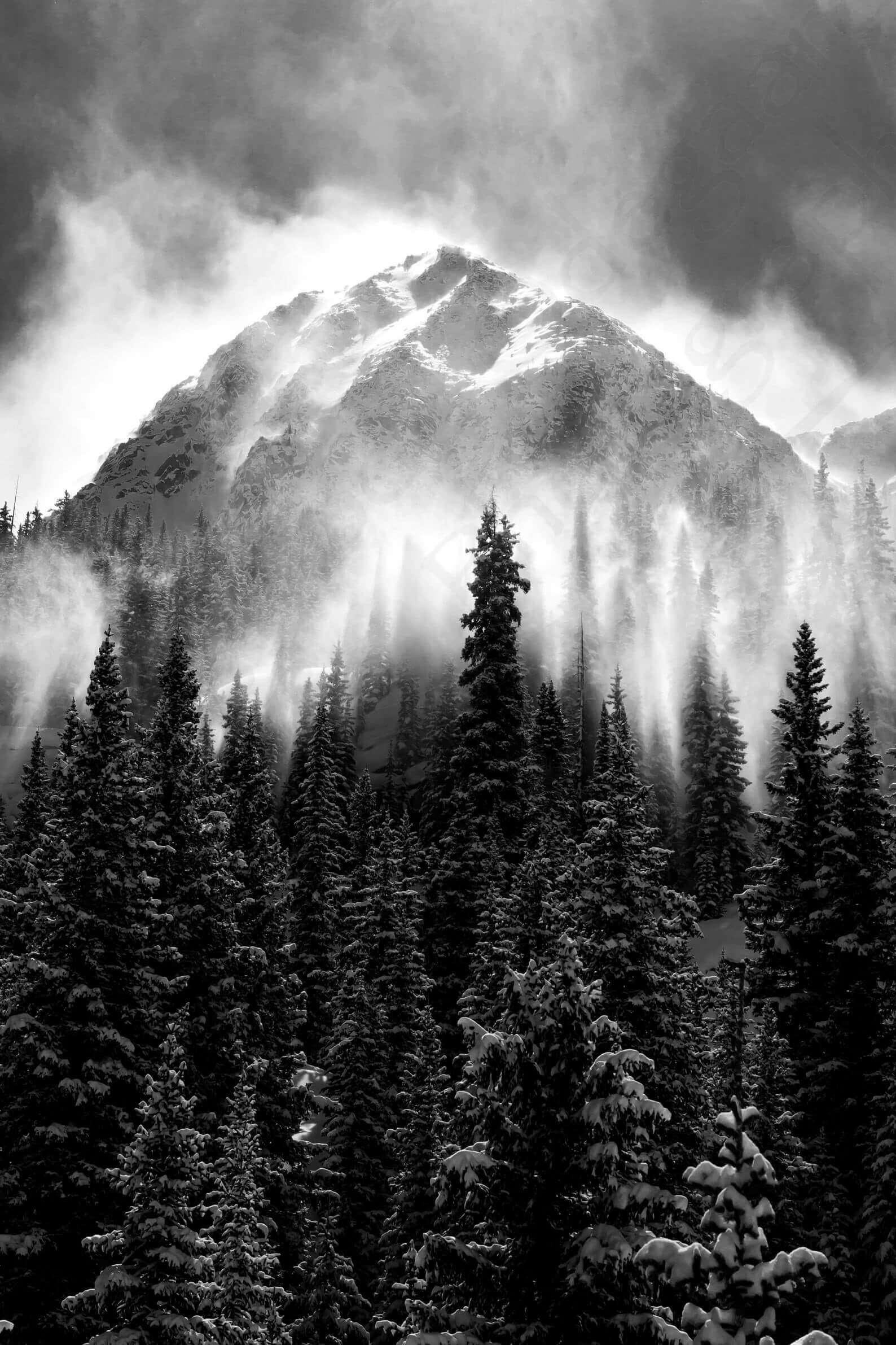 Black and white prints - TMOPhotographyStudio