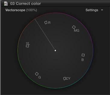 Vectorscope App - StudioBinder