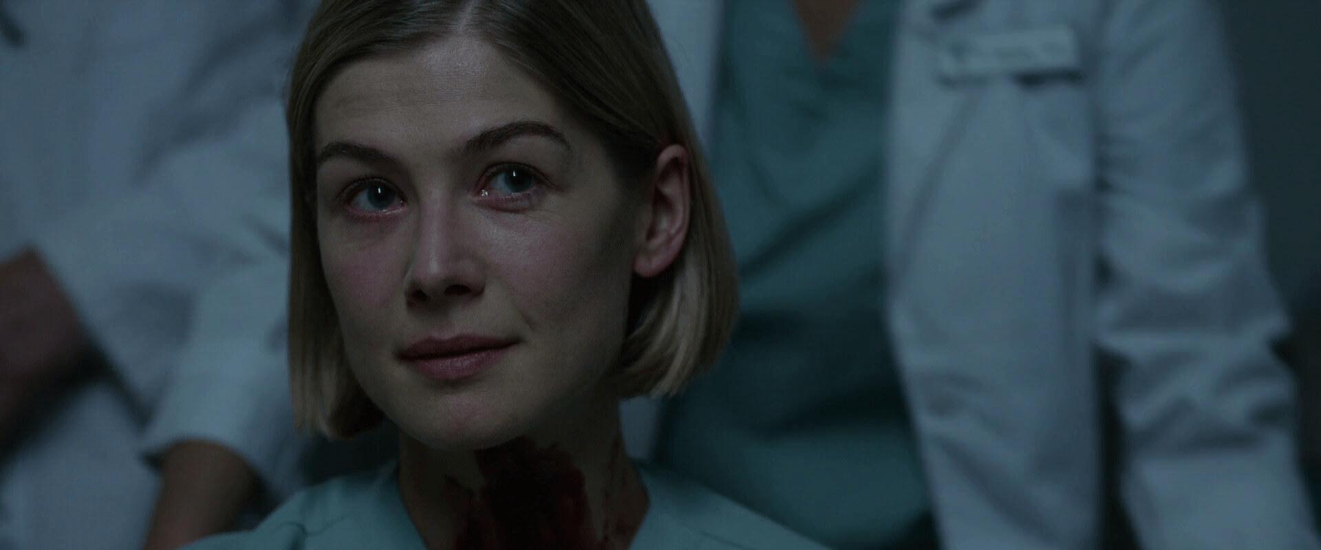 David Fincher Director Colors in Gone Girl